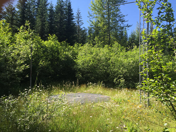Photograph is of the Skate Creek  SNOTEL site.