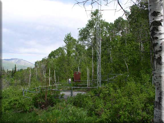 Photograph is of the Ben Lomond Trail      SNOTEL site.