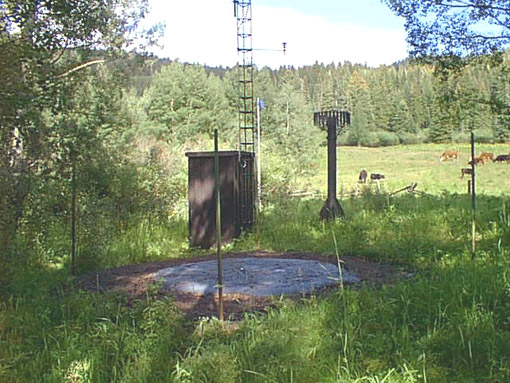 Photograph is of the Burro Mountain  SNOTEL site.