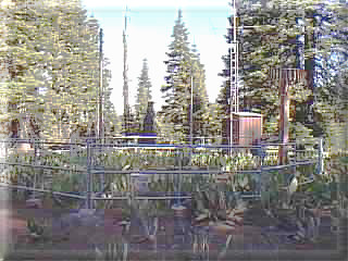 Photograph is of the Cedar Pass  SNOTEL site.