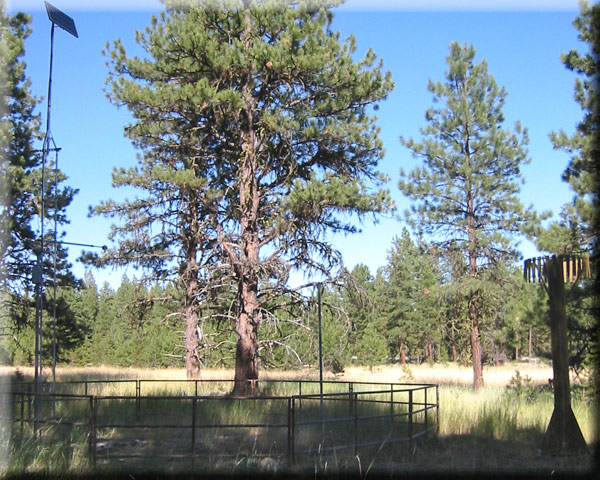 Photograph is of the Lake Creek R.S.  SNOTEL site.