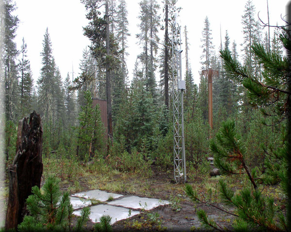 Photograph is of the Mckenzie  SNOTEL site.