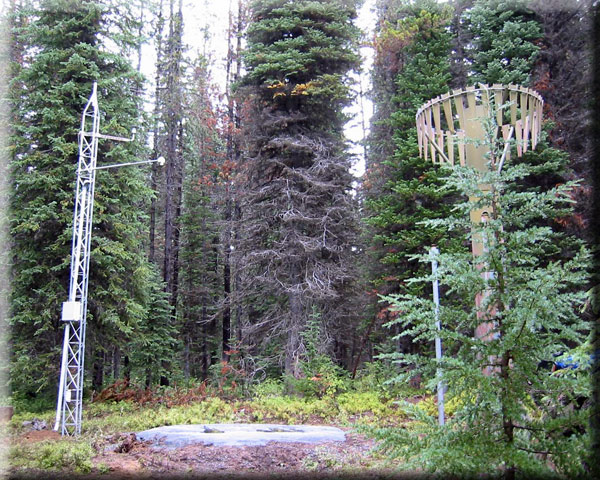 Photograph is of the Moss Springs  SNOTEL site.