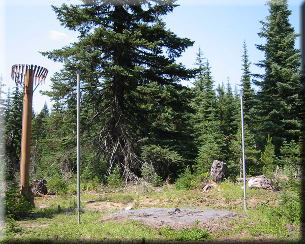 Photograph is of the Potato Hill  SNOTEL site.