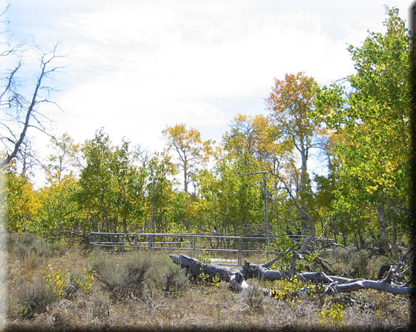 Photograph is of the Silvies  SNOTEL site.