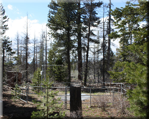 Photograph is of the Summer Rim            SNOTEL site.