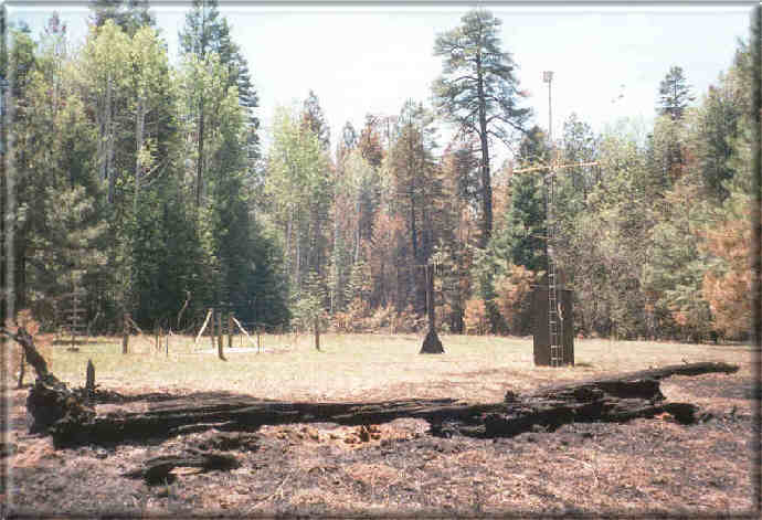 Photograph is of the Workman Creek  SNOTEL site.