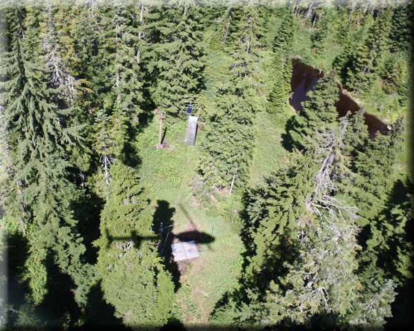 Photograph is of the Alpine Meadows  SNOTEL site.