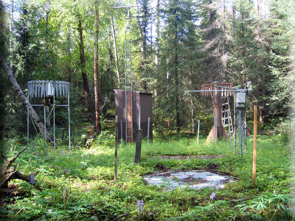 Photograph is of the Kenai Moose Pens      SNOTEL site.